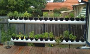 Vertical Gardening Workshop