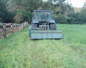 Mulching the paddock with a mulcher