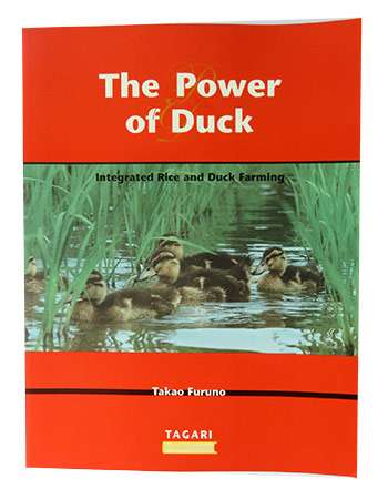 The Power of Duck: Takae Furuno