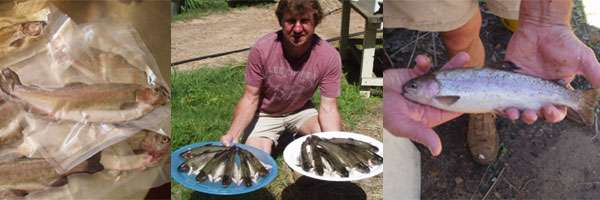 From the Aquaponics system – Our trout harvest, what a treat!