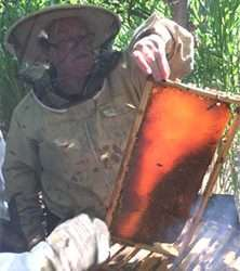 Another group of new beekeepers emerged very happy from the day's workshop