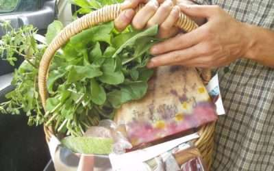 The Valley Veg Basket Project