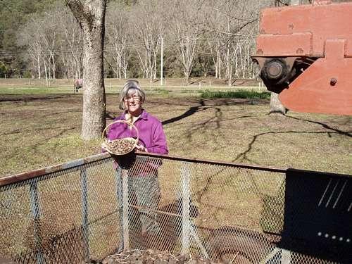 Farmer of the month: Jane Blacker – St Albans Nut Company