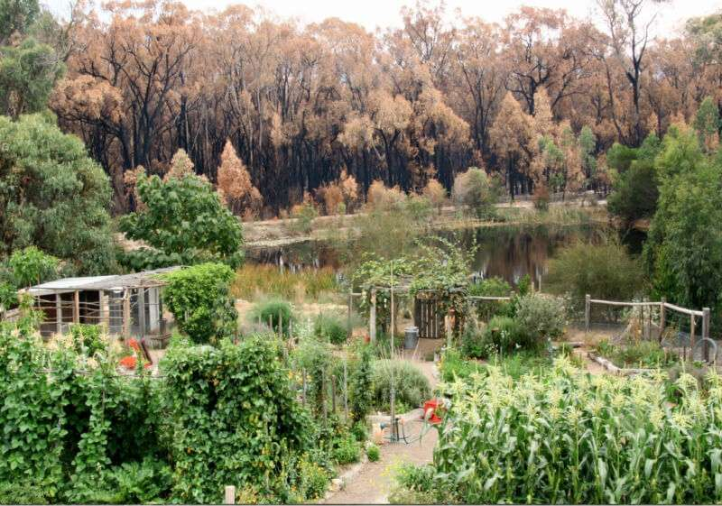 Permaculture Strategies for Fire Prevention & Preparedness.
