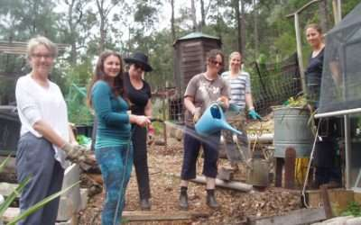 Permaculture Sydney Institute (PSI) Seasonal Permabees – Labour, learn and laugh together