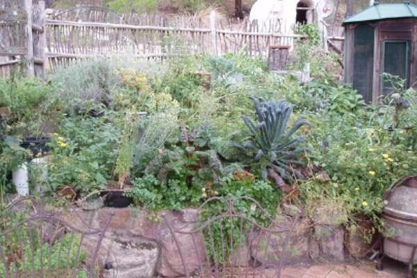 The Kitchen Garden Zone 1